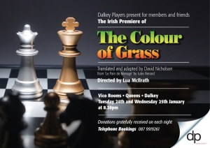 """David Nicholson"" playwright translation adaptation theatre theater plays Toronto ""The Colour of Grass"" ""Jules Renard"" ""Emma Jane Nulty"" ""David Butler"" ""Lua McIlraith"" ""Dalkey Players"""