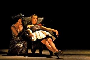 """David Nicholson"" playwright translation adaptation theatre theater plays Toronto Moliere Misanthrope"